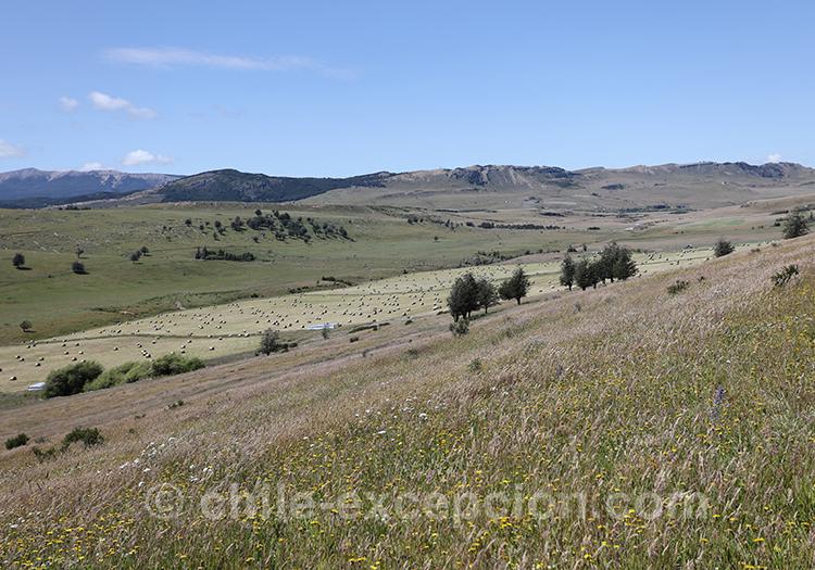 Immensité des terres de Patagonie au Chili