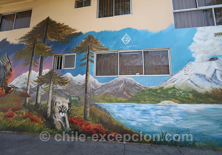 Lacs en peinture sur les murs du quartier Yungay, Chili avec l'agence de voyage Chile Excepción