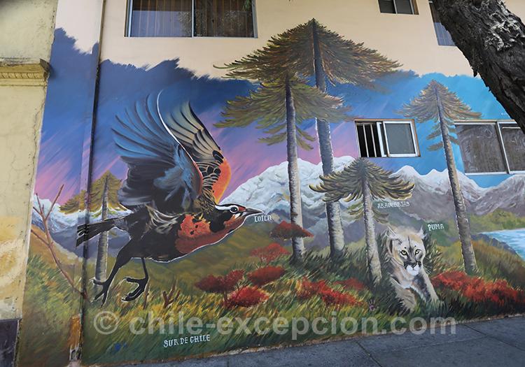 Patagonie des lacs et volcans sur les murs du quartier Yungay, Chili avec l'agence de voyage Chile Excepción