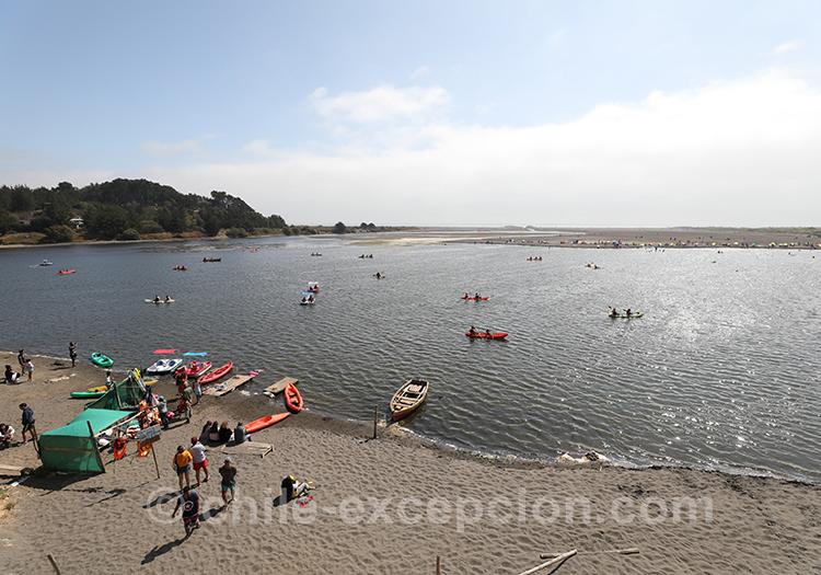 Se baigner dans la lagune de Cahuil au Chili