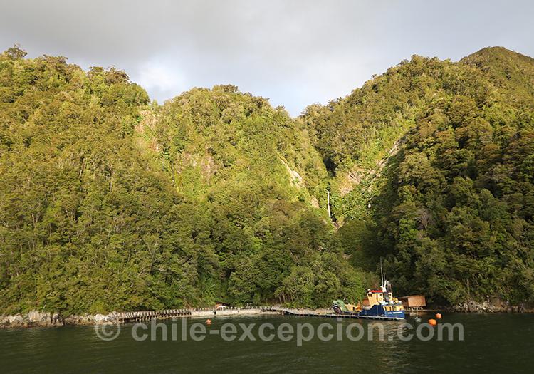 Que faire sur le fjord Aysen, thermes Ensenada Pérez