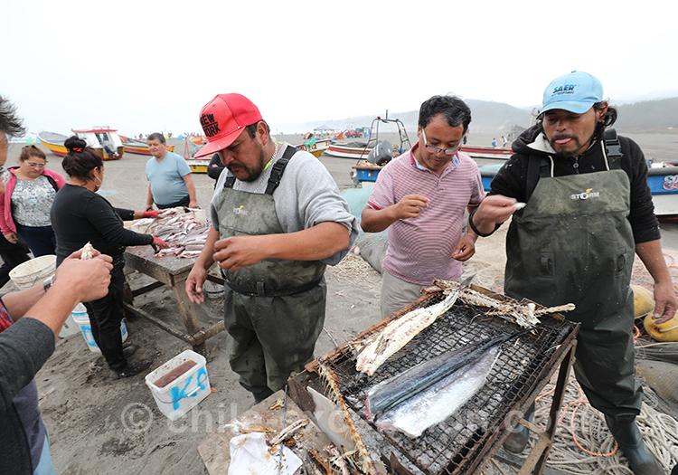 La pêche a été bonne à Bucalemu, Chili