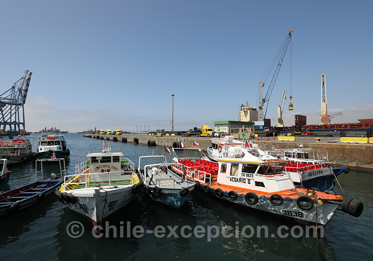 Ville portuaire, Valparaiso, Chili