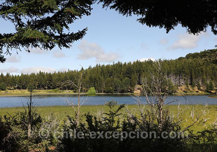 Découvrir le parc national Coyhaique, Patagonie du Chili