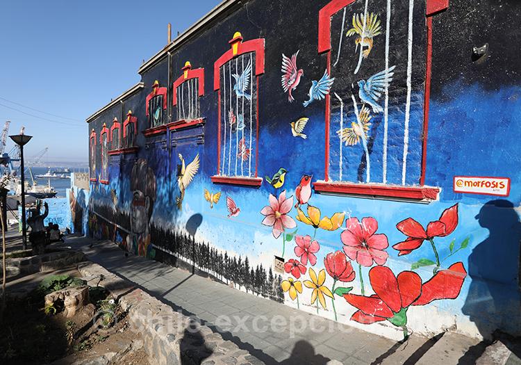 Peinture murale du Cerro Cordillera, Valparaiso
