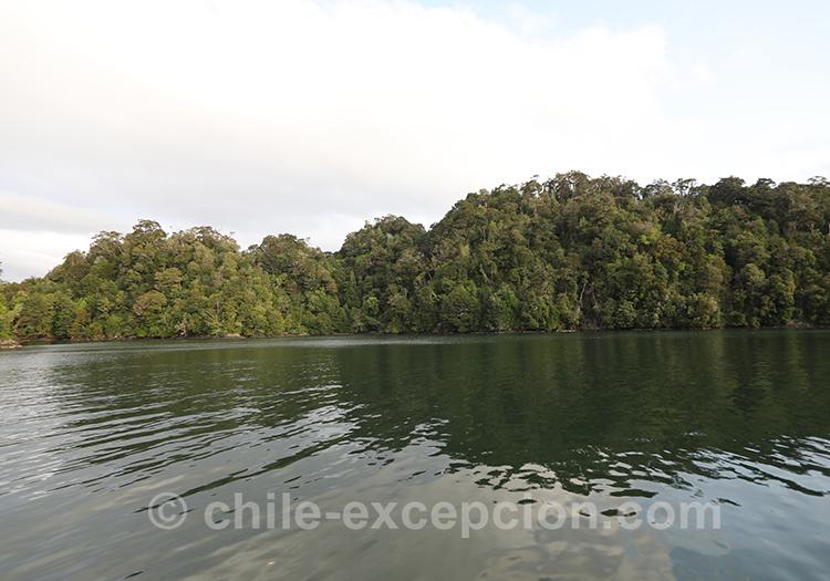 Cinco Hermanas, fjord Aysen, Patagonie chilienne
