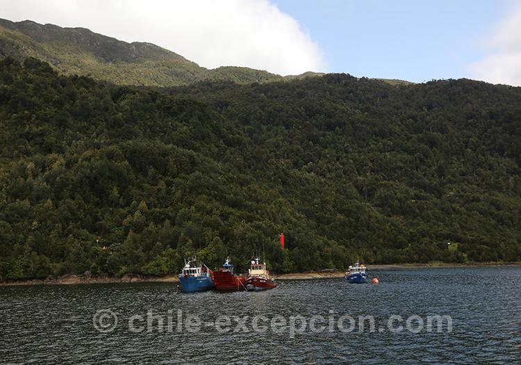 Fjord Aysen, visiter les thermes Ensenada Pérez, Chili