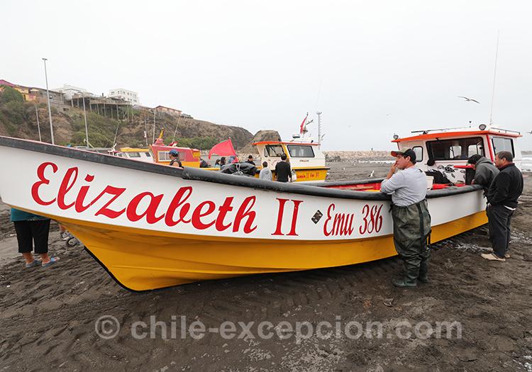 Bateau de pêche à Bucalemu, Chili