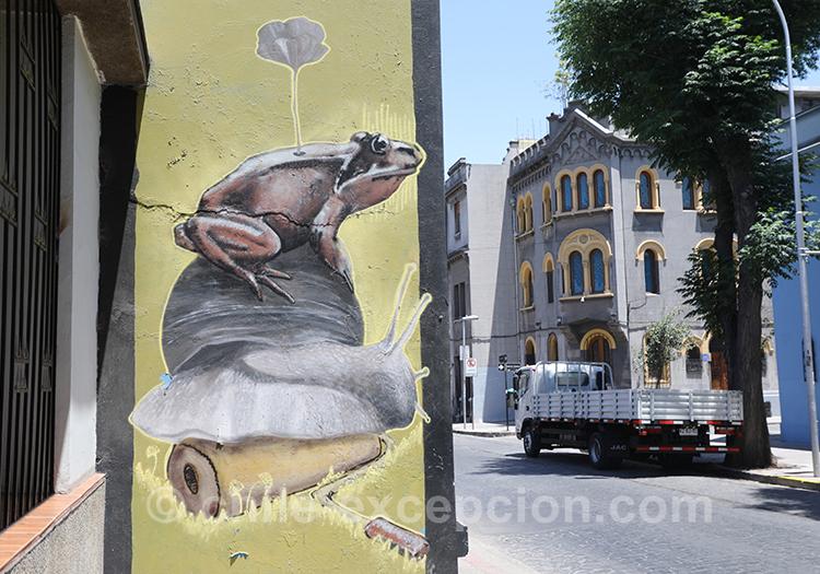 Grenouille sur un escargot, peinture à Yungay à Santiago avec l'agence de voyage Chile Excepción