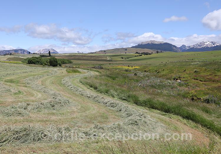 Visiter la région de Coyhaique, la Patagonie chilienne