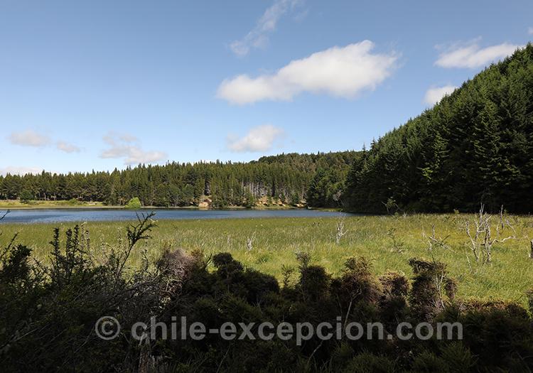 Parc national Coyhaique, lac de Patagonie, Chili