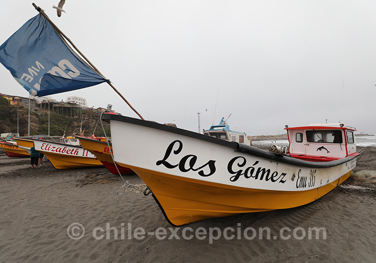 Bateau de pêche de la crique de Bucalemu, Chili