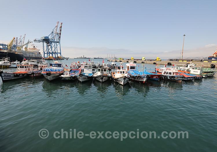 Se balader sur le port de Valparaiso