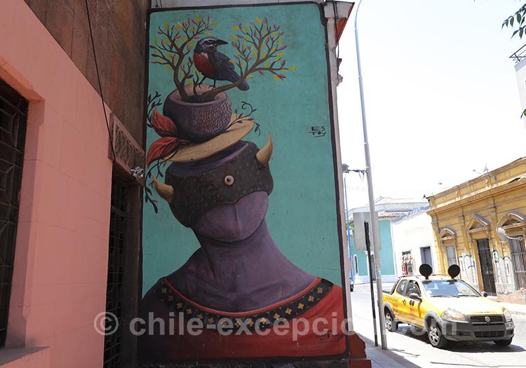 Artiste de rue et nature, Yungay à Santiago, Chili avec l'agence de voyage Chile Excepción