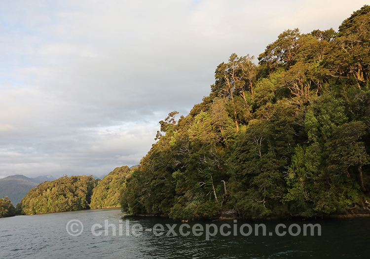 Cinco hermanas, archipel au milieu du fjord Aysen, Chili