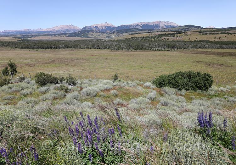 Paysages de la Patagonie chilienne, Coyhaique