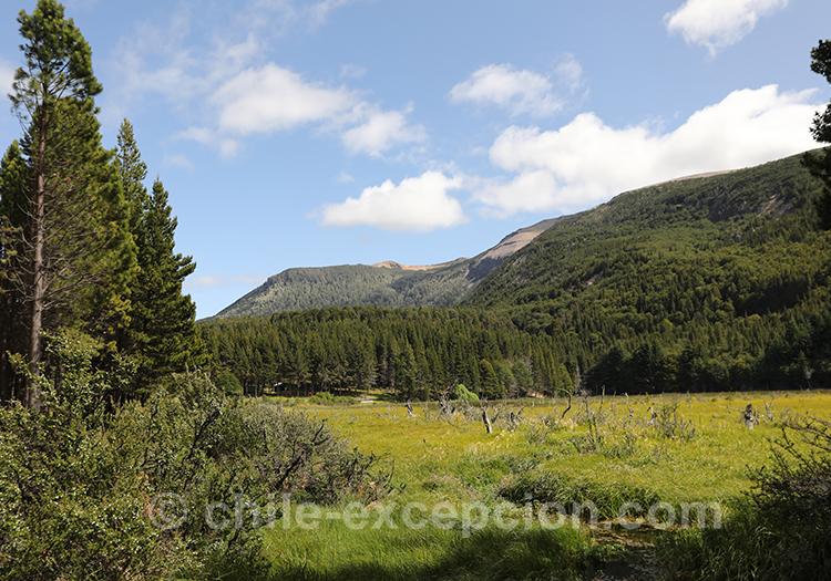 Patagonie australe du Chili, parc national Coyhaique, Chili