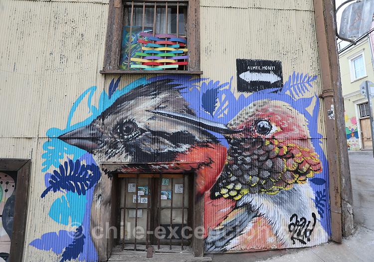 Les peintures d'oiseaux dans les rues de Valparaiso