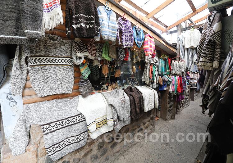 Féria artisanale de Coyhaique