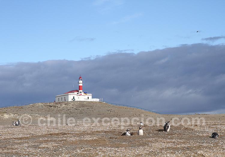 Vue magnifique sur le phare de l'île Magdalena, Chili