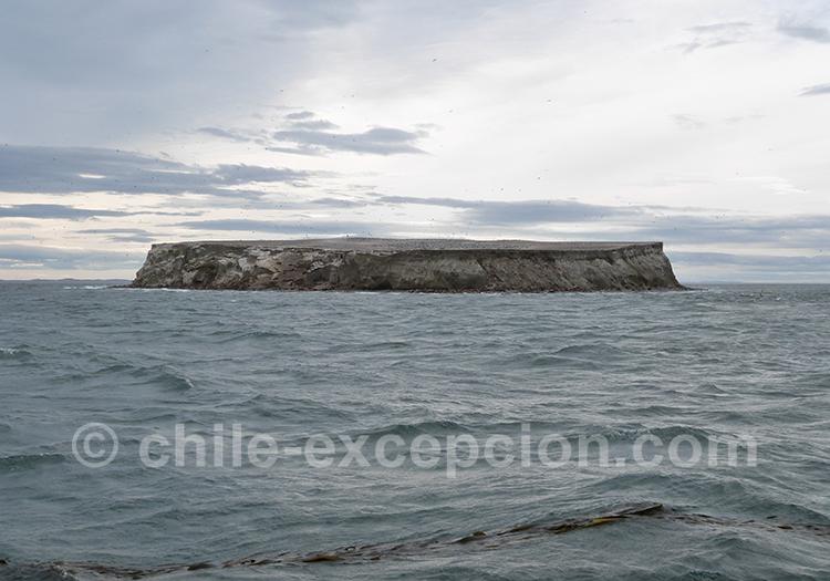 Vue sur le monument naturel Los Pinguinos, Chili