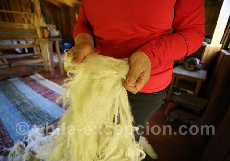 Tissage Mapuche, tradition et artisanat du Chili