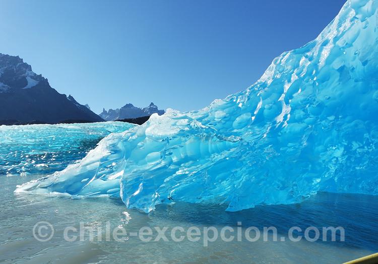 Excursion sur le lac Grey à Torres del Paine