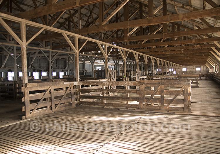 Hangar pour l'élevage de moutons au Chili, estancia Cerro Guido