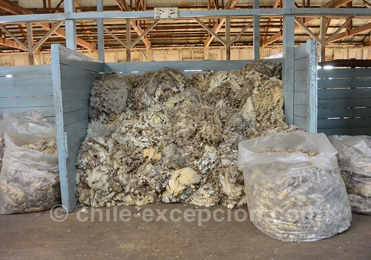 Stockage de la laine à l'estancia Cerro Guido