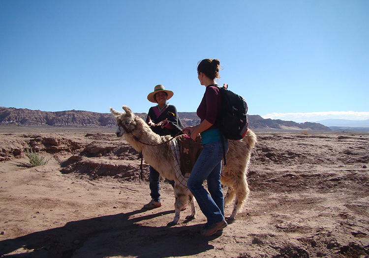 Randonnée avec les lamas à Atacama