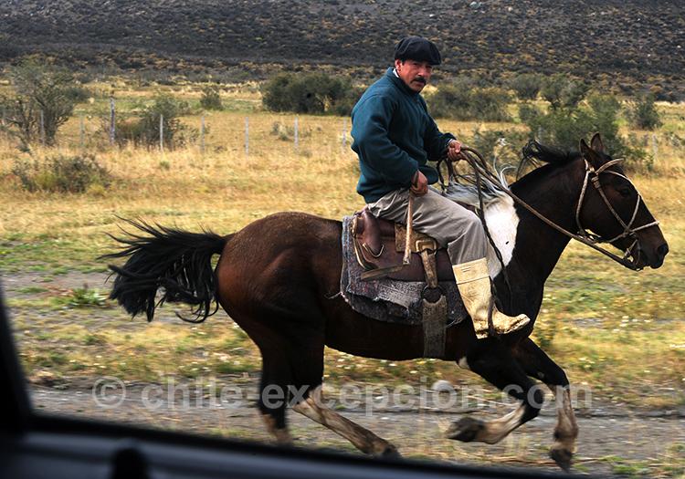 Huaso du Chili à l'estancia Cerro Guido