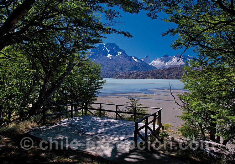 Petit ponton sur le Lac Grey depuis l'hotel Lago Grey