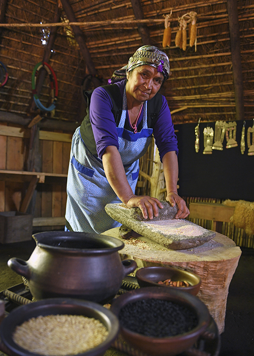 Nouvel An Mapuche