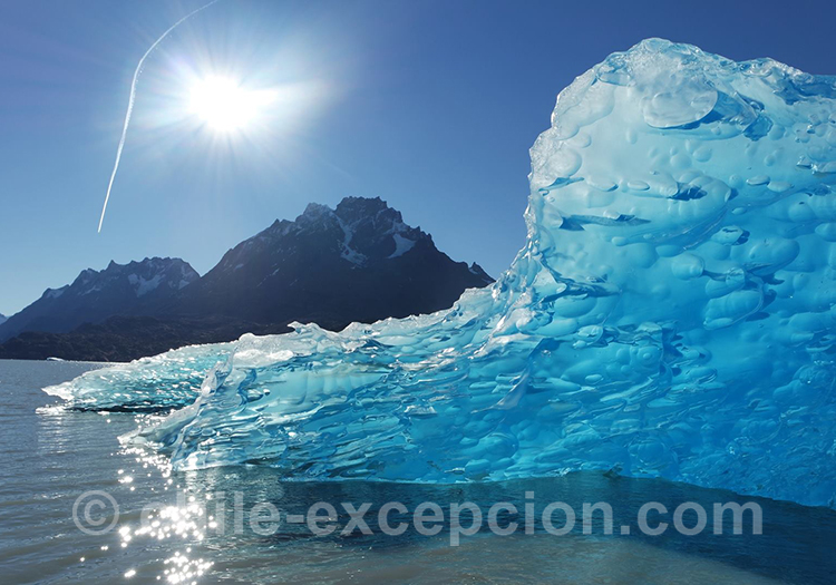 Le trésor du lac Grey, Torres del Paine, Chili