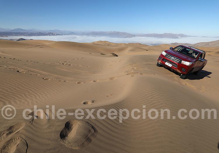 Excursion dans les dunes de Copiapo au Chili
