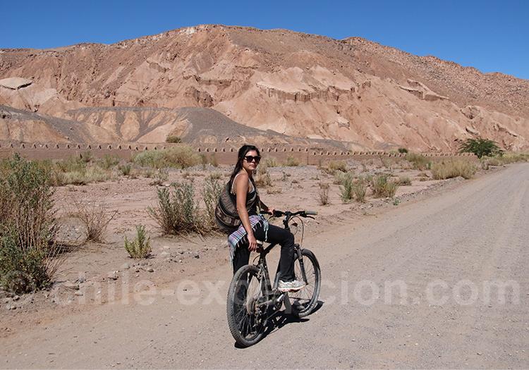 Excursion en VTT à San Pedro de Atacama