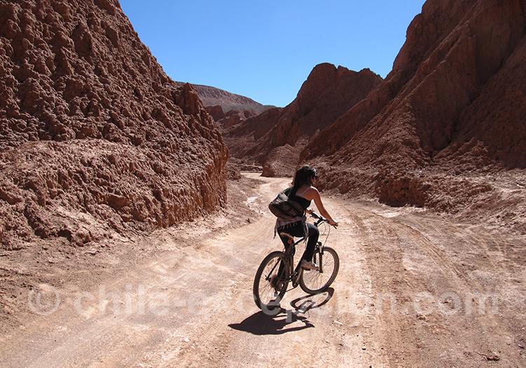 Randonnée à VTT dans la région d'Atacama