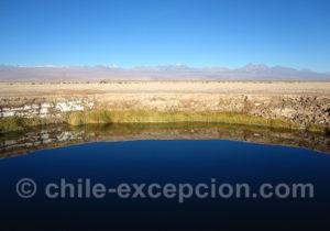 Laguna Tebinquiche, salar d'Atacama