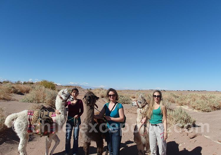 Escapade avec les lamas