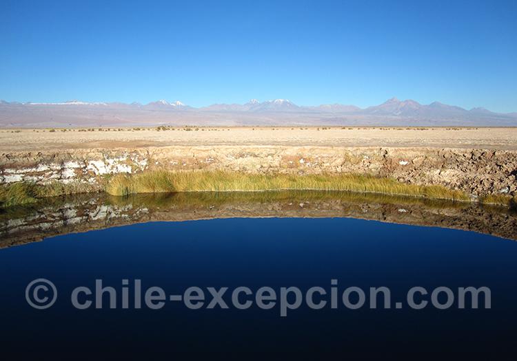 Laguna Tebinquiche, Atacama, Chili