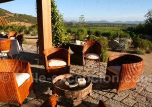Clos Apalta Residence vallée de Colchagua