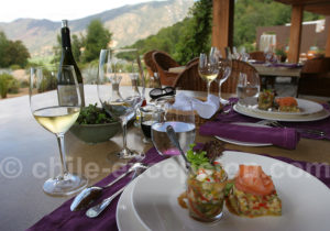 Hotel Clos Apalta Chili