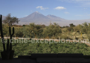 Le Licancabur depuis le Tierra Atacama