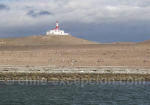 Monument naturel Los Pingüinos, Détroit de Magellan