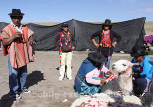 Traditions de l'altiplano chilien