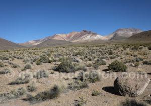 Les sommets du Taapaca