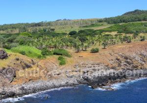 Excursion sur l'île de Pâques