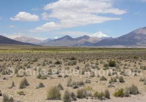 Parc national Isluga
