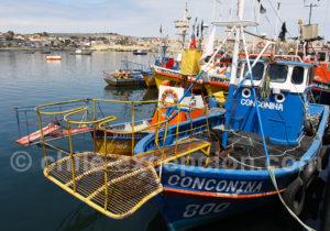 Port de pêche de Caldera