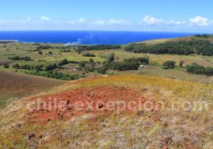 Rapanui, île rouge et verte